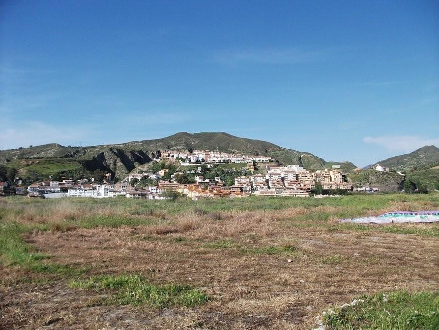 Algodanales 2010 041