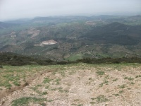 Algodanales 2010 053