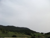 Algodanales 2010 055