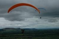 Gliders 2011
