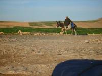 Morocco Feb 2009